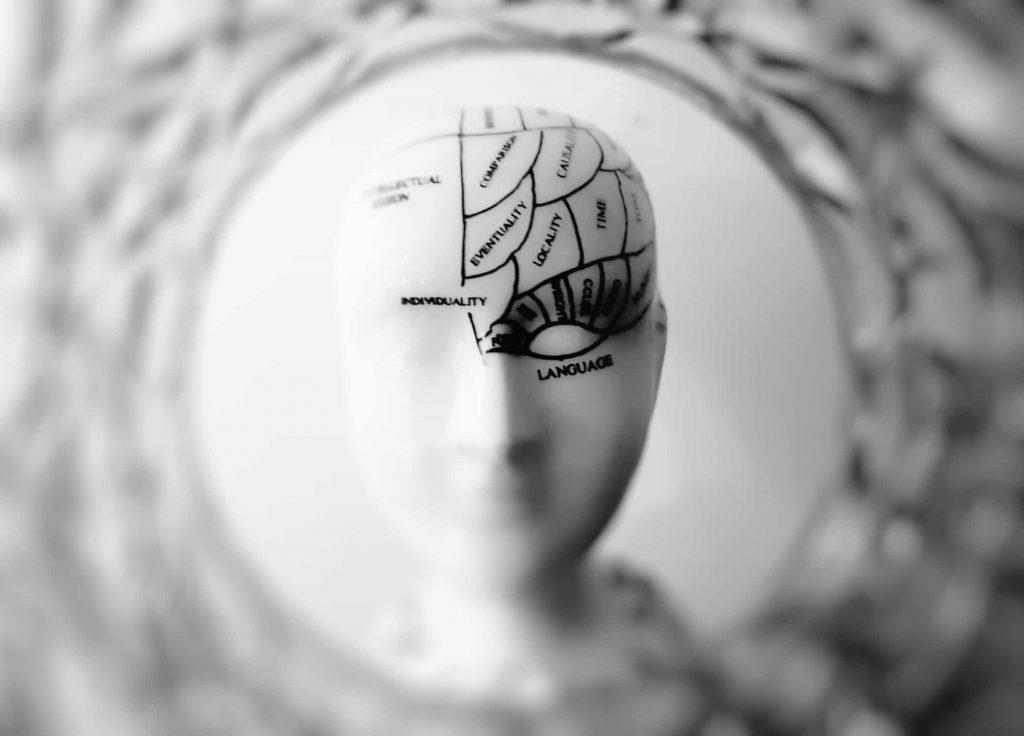 cerveau qui pense