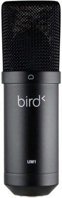 Bird UM1 microphone usb