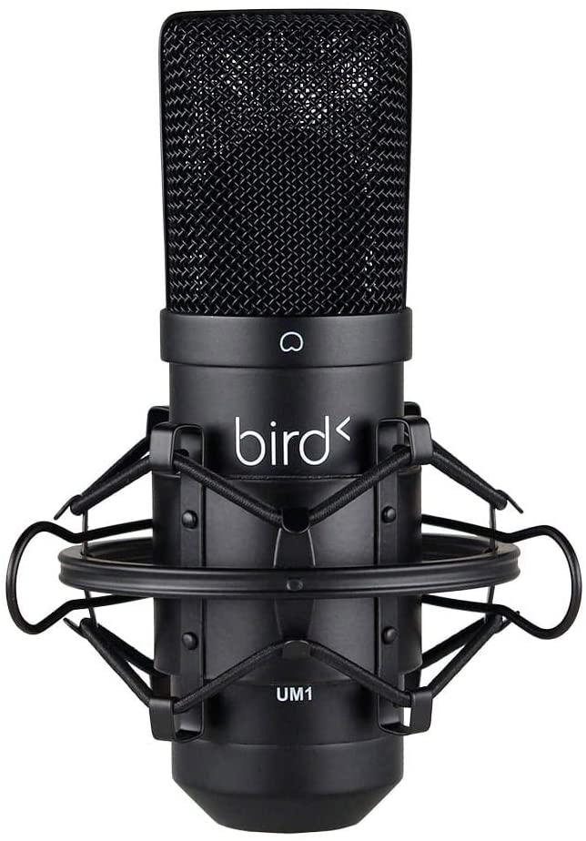 Bird UM1